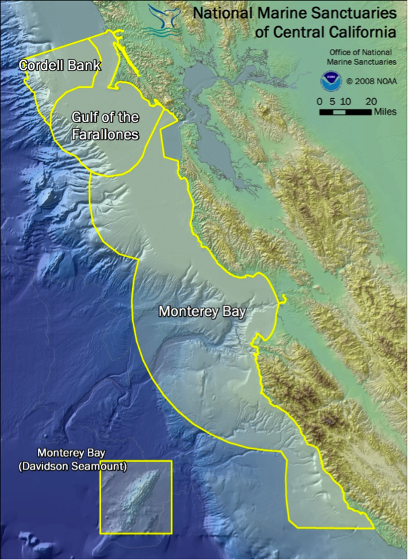 California Marine Sanctuary