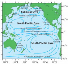 Pacific Current